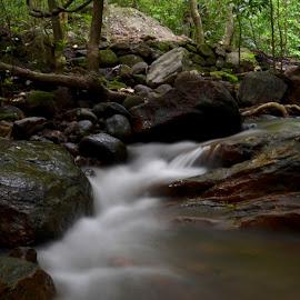 The Milky stream by Varun Vijay - Nature Up Close Water ( stream, nature )