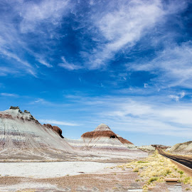 Beauty by Lisa Fitzthum - Landscapes Deserts ( clouds, petrified forest, desert, sky, painted desert )