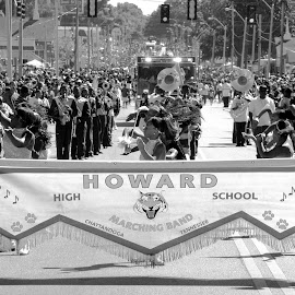 Howard High School Marching Band by Paul Hopkins - People Musicians & Entertainers (  )