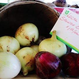 Local Ontario Spanish Mamoth Onions by Hannah Cohen - Nature Up Close Gardens & Produce ( home grown, spanish, fruite, ontario, country, picton, huge, veggatables, massive, farmer, fresh, farmer's market, county, sales, local, onion, produce,  )
