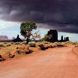 Storm coming to Monument valley by Chuck Cornell - Landscapes Deserts (  )