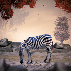 Feel Hopeless Alone Without Shelter by Alfa Oldicius - Digital Art Animals