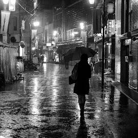 by Theo Shilton  - City,  Street & Park  Street Scenes