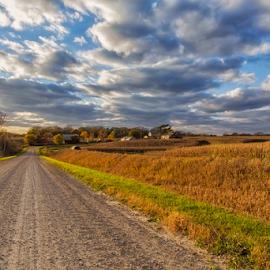 Fields of Home by Michael Buffington - Landscapes Prairies, Meadows & Fields ( iowa, grass, brown, harvest time, corn field )