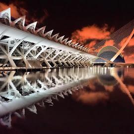 Museo De Las Ciencias By Night by Dark Reid - Buildings & Architecture Public & Historical ( , Lighting, moods, mood lighting )