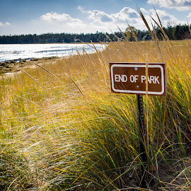 End of Park by Steve Hall - Landscapes Beaches ( events, 2014 door county trip )