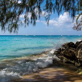Barbados beach by Aleksey Maksimov - Landscapes Beaches ( blue, waves, tropical, ocean, beach, rocks,  )