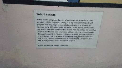 Table Tennis Template