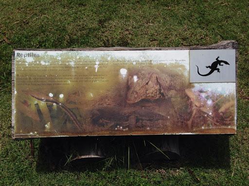 Eco Park Reptiles