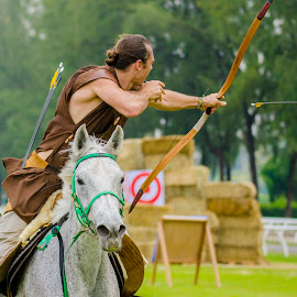 Horse, Arrow & Bow by Ken Kent - Sports & Fitness Other Sports ( truf club, arrow, horse, rodeo, turf, selangor turf club, bow )