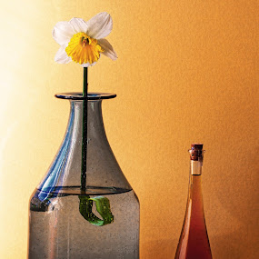Flower and oil by Stephen Hooton - Digital Art Things