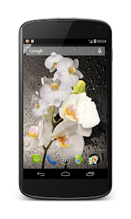 Orchid 3D Live Wallpaper - screenshot