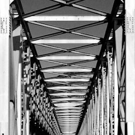 Ferradosa Bridge by Antonio Amen - Buildings & Architecture Bridges & Suspended Structures ( railway, ferradosa, links, bridge, portugal, douro )