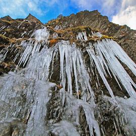 Freezing Fall by Steven De Siow - Landscapes Weather ( nature, freeze, fall, weather, landscape )