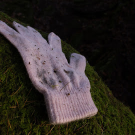 Lost by Marc Steele - Artistic Objects Clothing & Accessories ( lost, winter, hathersage, pink, glove, wet, walk, peak district )