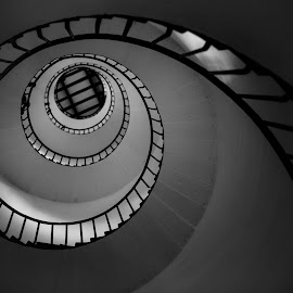 Spiral Walk by Aneesh Omanakuttan - Buildings & Architecture Other Interior ( stairs, black and white, spiral, walk )