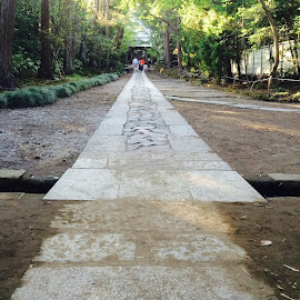 Pavement to Kamakura Jufuku-ji by Kristina Samuel - Instagram & Mobile iPhone ( japan, kamakura, pavement )