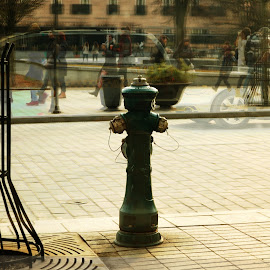 Vilnius fire hydrant by Paul Nelson - City,  Street & Park  Street Scenes