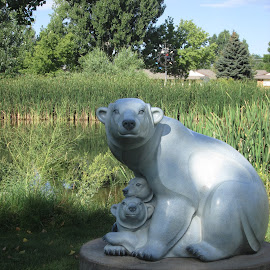 Polar Bears by Dennis Hockabout - City,  Street & Park  City Parks ( public art sculpture bears )