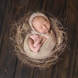 Sweet Innocence by Meagan Opel - Babies & Children Babies ( newborn photography )
