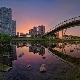 Bishan Park by Kafoor Sammil - City,  Street & Park  City Parks ( bishan park, singapore )