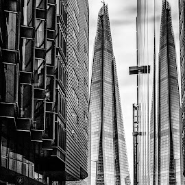 Shard Reflection by Mark Evans - Buildings & Architecture Architectural Detail