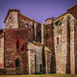 San Galgano Abbey by Michael Moss - Buildings & Architecture Places of Worship