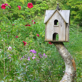 Bird house on a limb by Constance S. Jackson - Artistic Objects Other Objects ( unique, nature, birdhouse, flowers )