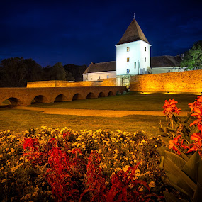 Nadasdy castle at night, Sarvar (Hungary) by Zoltan Duray - Buildings & Architecture Public & Historical ( hungary, old, park, nadasdy, sarvar, tower, summer, castle, night, bridge, sárvár, light, flower )