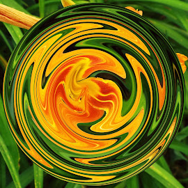 Orange Lilly by Marilyn Bass - Digital Art Things ( lillies, arkansas photographer, day lilly, orange day lillies, orange day lilly, lilly, day lillies, arkansas )