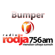 Bumper Rodj.. file APK for Gaming PC/PS3/PS4 Smart TV