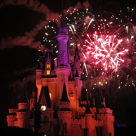 Cinderellas Castle with Fireworks behind by Darleen Stry - Abstract Fire & Fireworks ( 2014, light display, fireworks, m magic kingdom, night, castle, disney, photography )