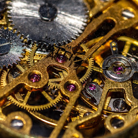 Watch time by Ralf Harimau Weinand - Artistic Objects Jewelry ( macro, skelettuhr, uhr )