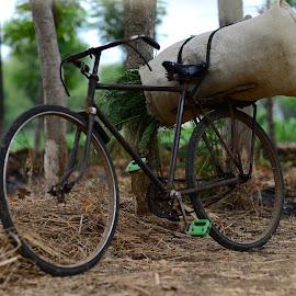 Grasson the bike by Taufan F Adryan - Transportation Bicycles