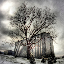 Magic by Mark Six - Buildings & Architecture Other Exteriors ( bourbon, building, sky, whiskey, landscape,  )