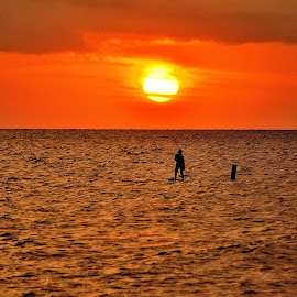 Paddle Boarder at Sunset by Charles Pfohl - Landscapes Sunsets & Sunrises ( paddle board )