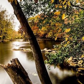 Grand river side fall view... by Rajeev Krishnan - Nature Up Close Water ( riverside, fall colors, autumn, waterscape, nature up close )