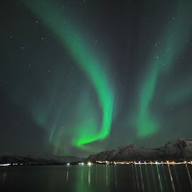 Northern lights by Marius Birkeland - Landscapes Waterscapes ( sky, aurora borealis, aurora, sea, city )