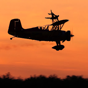 WingWalker by Clifford Martin - Transportation Airplanes ( gene soucy, silhouette, teresa stokes; wingwalker, air show )