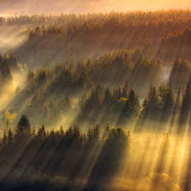 Magic Morning by Pawel Uchorczak - Landscapes Mountains & Hills ( europe, sunrise, light, world, poland )