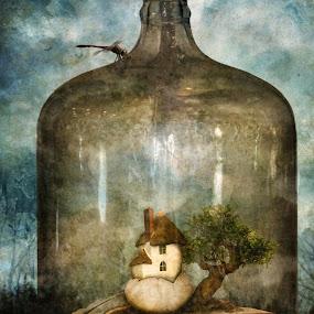 Untitled by Tina Bell Vance - Illustration Sci Fi & Fantasy ( fantasy, illustration, collage, landscape, surreal )