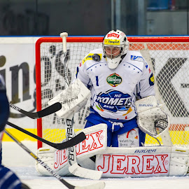 goalkeeper by Roman Turovský - Sports & Fitness Ice hockey ( hockey, goalkeeper, ice, icehockey, sport )