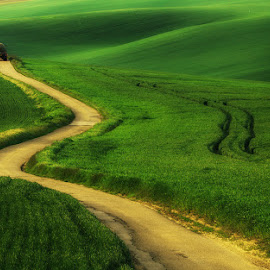 Long way by Pawel Uchorczak - Landscapes Mountains & Hills ( moravia, green, czech, tractor, light )