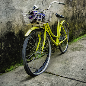 'OL BIKE by Rogz Necesito Jr. - Artistic Objects Still Life ( broken, old, still life, street, bicycle )
