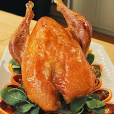 Slow-Roasted Heritage Turkey with Orange and Sage