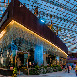 Dome by Erwin Sutarko - Buildings & Architecture Other Interior ( interior, garden by the bay, dome, marina bay sands, architecture, singapore )