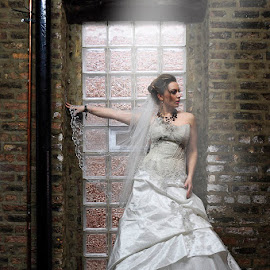 Shining Bride by Lou Angeles - Wedding Bride ( bridal, wedding, woman, dress, white, bride, photo )