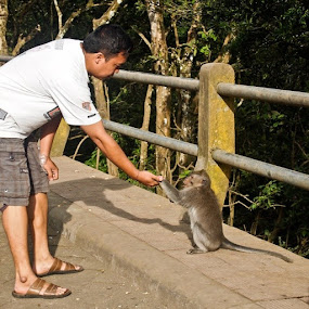 by Putu Purnawan - People Street & Candids ( street, playwithmonkey, man, monkey )