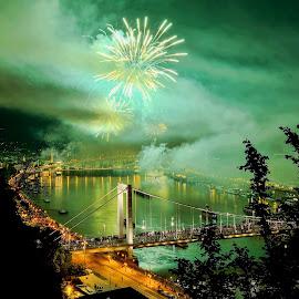 My Budapest Firework by Ilyés Zoltán - City,  Street & Park  Historic Districts ( hungary, tüzijáték, budapest, national day, fireworks )