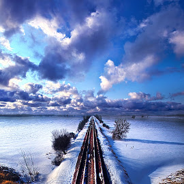 May I Reach Its End by Phil Koch - Transportation Railway Tracks ( vertical, photograph, farmland, transportation, yellow, storm, leaves, love, sky, nature, tree, autumn, shadow, snow, train, wind, orange, twilight, agriculture, horizon, portrait, environment, dawn, winter, season, national geographic, serene, trees, floral, inspirational, natural light, wisconsin, railroad, phil koch, spring, sun, photography, farm, ice, rail, horizons, rain, inspired, clouds, office, park, green, scenic, tracks, morning, shadows, field, red, blue, sunset, fall, peace, meadow, summer, earth, sunrise, landscapes,  )